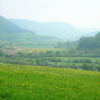 Blick über die Frühlingswiesen in der Nähe von Deggingen.