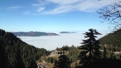 Blick übers Draxlerloch Richtung Göstling (irgendwo im Nebel)