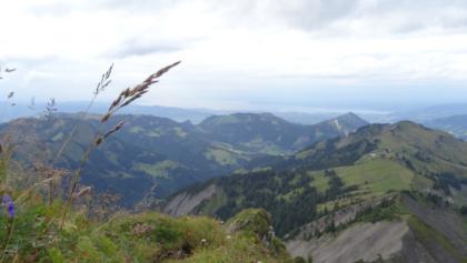 Blick vom Hohen Freschen (2004 m) zum Bodensee