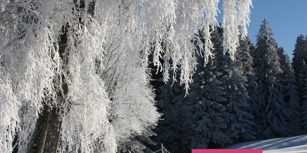 Beschilderung der Winterwanderwege