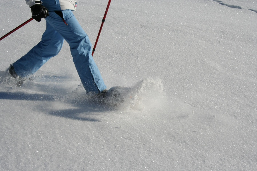 Schneeschuhtrail Sattelwasen Herrenschwand