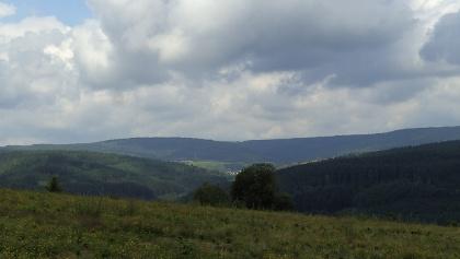 Der weiten Wälder des Spessart.