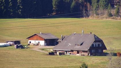 Blick auf einen typischen Schwarzwaldhof.
