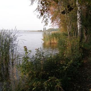 Vom Ufer des Zierker Sees beim Franzosensteg bietet sich ein schöner Ausblick.