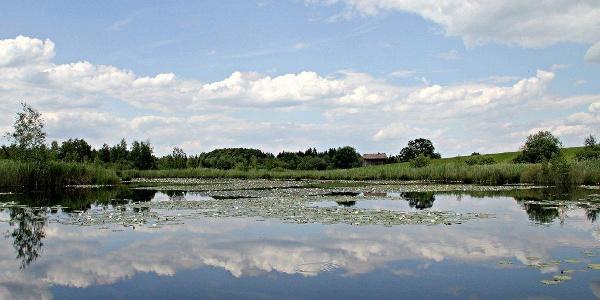 Unberührte Natur findet man auf der Gagast-Runde in Habach