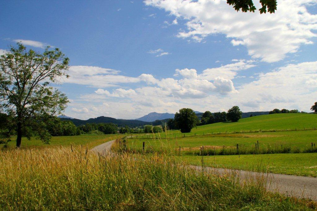 Alpenpanorama inklusive - auf der Gagast-Runde in Habach (Gemeinde Habach)