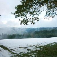 Ein Blick vom Waldrand vom Schömberg-Altenburg.