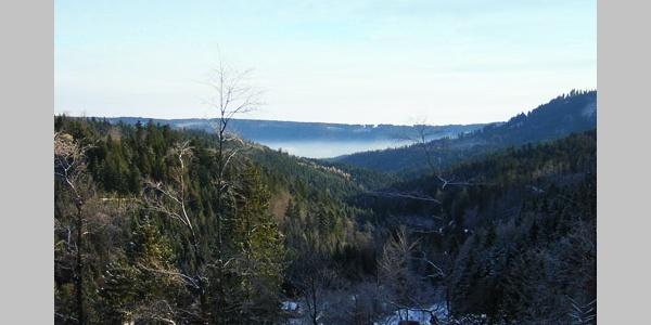 Ein Blick aufs Langenbachtal.