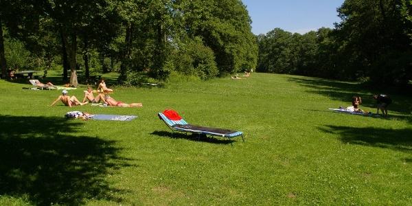 Freizeitgelände Abtsdorfer See