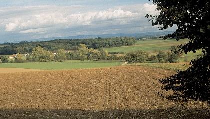 Bei unserer Tour schweift der Blick weit über das Hessenland.