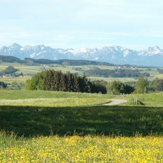 Blick in die Allgäuer Berge südlich von Krottenhill