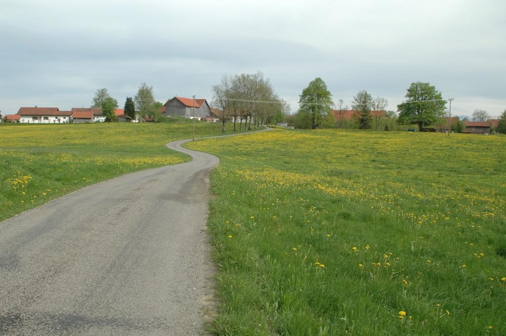 Kegelstichweg nördlich von Krottenhill (Gemeinde Ingenried)