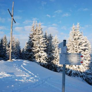 Am Gipfel des Edelsberg