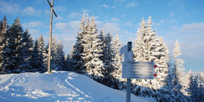 Skitour Von Nesselwang Auf Den Edelsberg 1630m Skitour