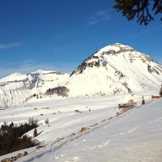 Plateauquerung um 1330m, Blick zum Gennerhorn.
