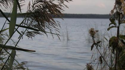 Auch der Goldberger See ist ein perfektes Badegewässer.