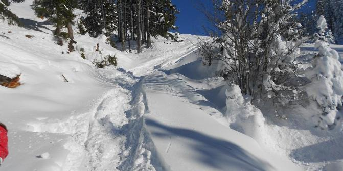 Pistentour Zur Buronhutte 278 Hm D Wertach Skitour