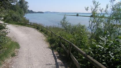 Die Tour bietet zahlreiche Blicke auf den Forggensee.