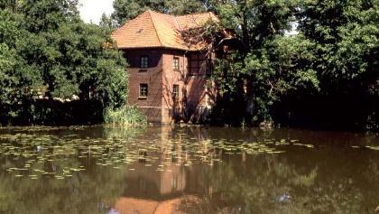 Teich mit Haus im Biberland