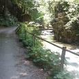 An der Steinacher Ache führt unser Weg separat von der Hauptstraße durch das Tal.