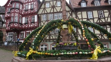 Miltenberg - Amorbach - Runde