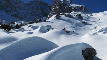 Die große Schneegrube unter dem Ochsenhorn