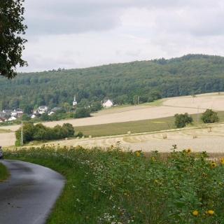 Lubentiusweg - Einstieg Wegegabelung Halfterweg