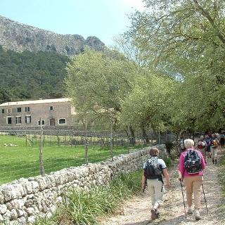 Not far from the Rifugio de Binifaldo