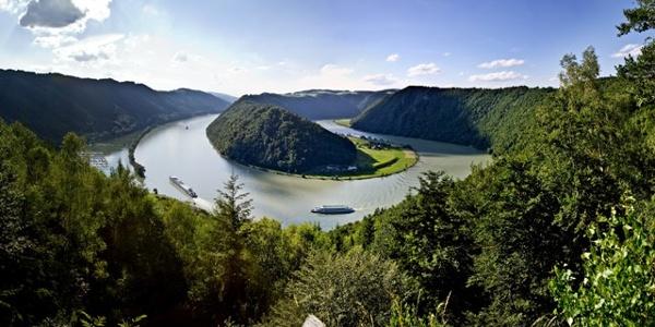 Panoramablick Schlögener Schlinge