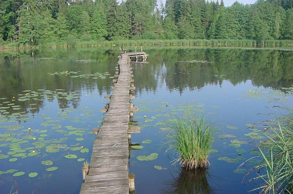Wer sich über den Steg traut, sitzt an dessen Ende auf einer Bank mitten auf dem Neusee. (Alpstein)