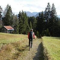 Die Tour verläuft durch Wiesen und Wälder.