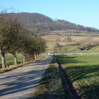 Blick von Süden auf den Hohen Dörnberg