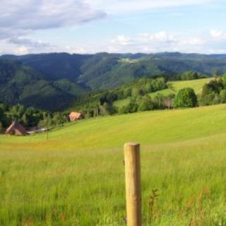 Blick auf den Elmlisberg