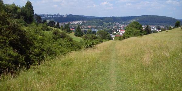 Blick vom Moldenberg auf Schnaitheim
