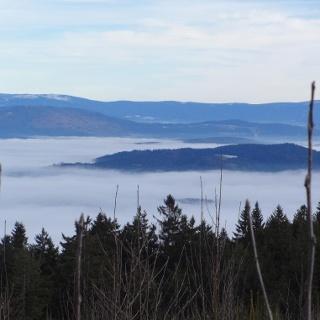 Blick in den Bayer. Wald
