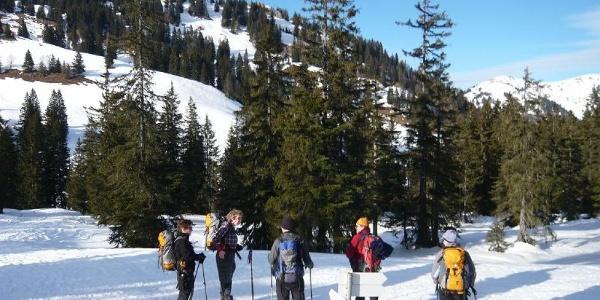 Schneeschuhgehen bei der Höllritzer Alpe