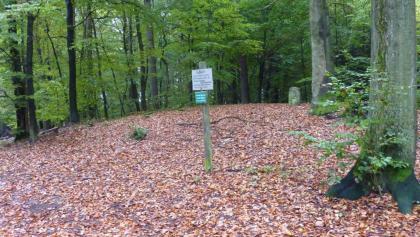 Hügel mit Fliegenstein