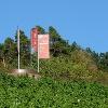 Terroir f - magischer Ort des Frankenweins