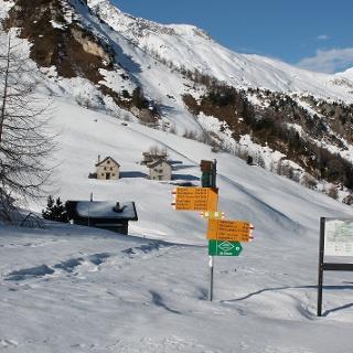 Alpe Lareccio