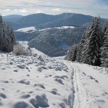 Schnee hat für Aufstieg schon gereicht, Abstieg ging leider nur auf dem Wanderweg