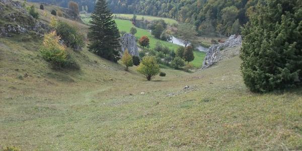 Blick aufs Eselsburger Tal