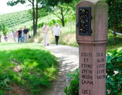 Sasbachwalden - Bildstöckleweg