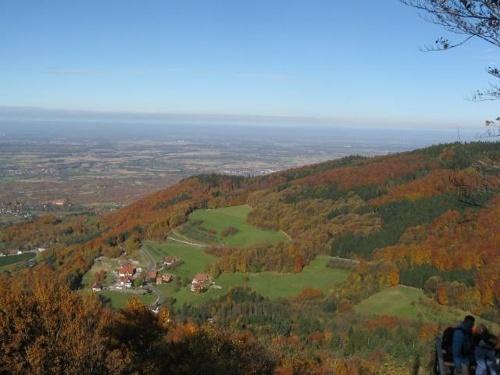 Rund um Sasbachwalden-Tour (11)
