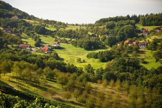 Sasbachwaldener Steig