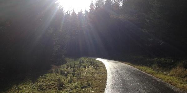 Weg zur Schwarzwaldhochstraße