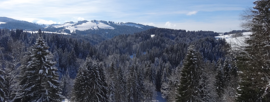 "Schneeschuh-Paradies ""Allgäuer Molassetobel"""