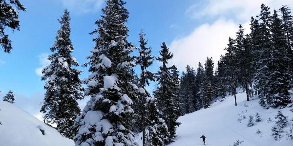 Skitourengeher am Hochschwarzeck
