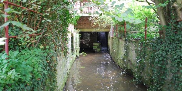 Wassermühle Vehlen Mühlbach