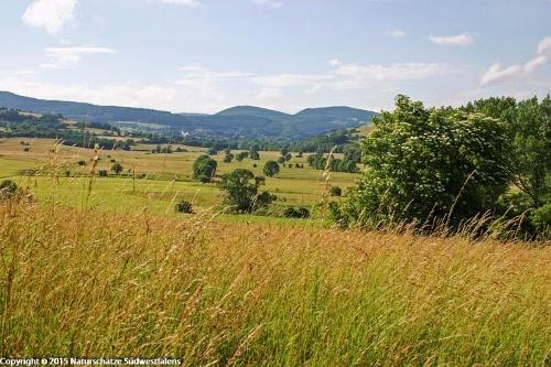 Nuhnewiesen - Naturerlebnisweg südöstlich von Hallenberg
