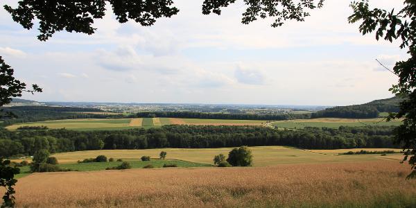 Blick nach Riedlingen